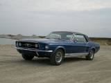 <h5>Ford Mustang  289 CO</h5><p>Bj.  1967,  4737  ccm        230  Ps</p>