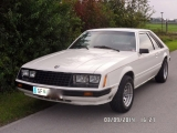 <h5>Ford Mustang III  Ghia</h5><p> Bj. 1979,  3300 ccm,          142  Ps</p>