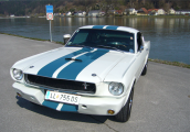 <h5>Ford Mustang Shelby</h5><p>Bj.1965, 307 Ps, 4795 ccm</p>